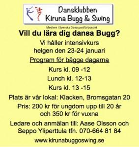 Buggkurs 23-24 jan 2016