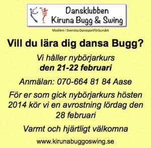Buggkurs 21-22 februari